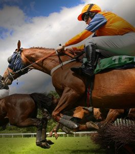 Multiflight-Charter-Horse-Racing