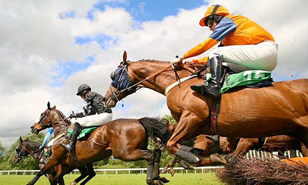 multiflight Chester Horse Races