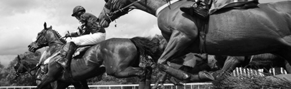 Multiflight Charter Events Horse Grand National Aintree